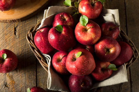 Raw Organic Red Delicious Apples Ready to Eat