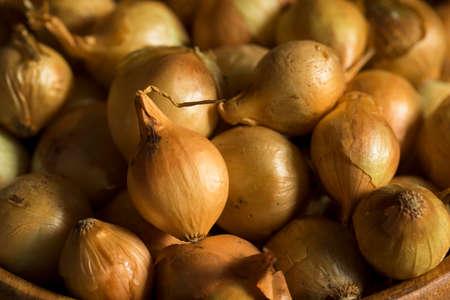 cebollas: Orgánico sin procesar amarillo Cebollas de perla listo para cocinar