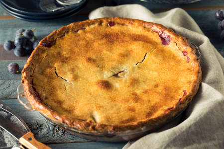 concord grape: Homemade Sweet Concord Grape Pie Ready to Eat