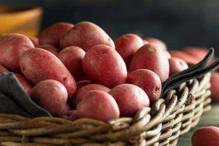 russet potato: Raw Organic Red Potatoes Ready for Cooking
