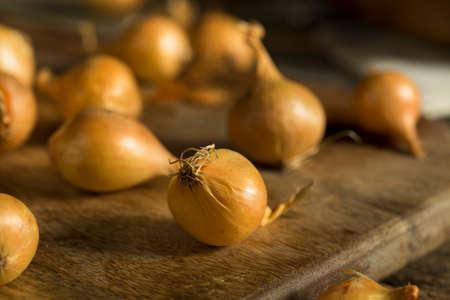 cebolla: Orgánico sin procesar amarillo Cebollas de perla listo para cocinar