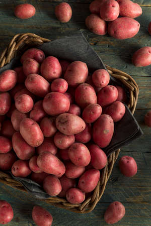 starchy food: Raw Organic Red Potatoes Ready for Cooking