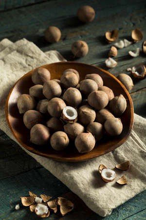 Raw Organic Coconut Coquito Nuts Cracked Open Stock Photo