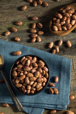 borlotti beans: Healthy Raw Organic Cranberry Beans Ready to Cook Stock Photo