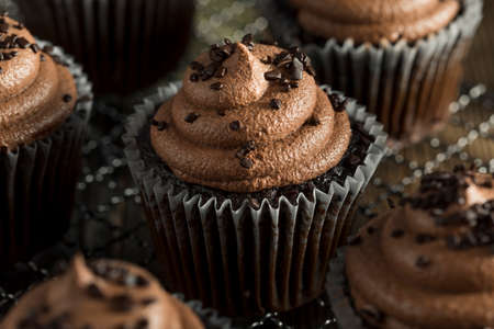 chocolate cupcakes: Homemade Sweet Chocolate Cupcakes with Dark Frosting on Top