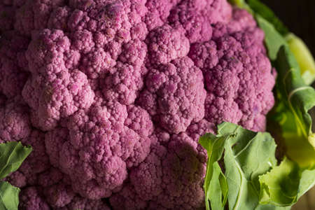 head of cauliflower: Raw Organic Purple Cauliflower Ready to Cook