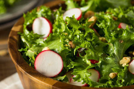 endive: Raw Organic Endive and Radish Salad with Dressing