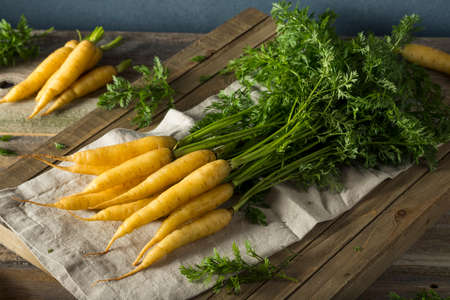 Raw Organic Yellow Baby Carrots Ready to Eat