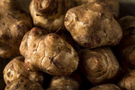 inulin: Raw Organic Jerusalem Artichoke Sunchokes Ready to Cook