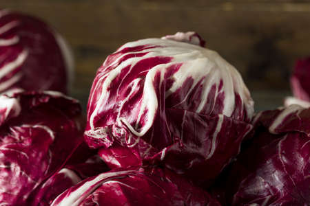 Raw Organic Purple Radicchio Lettuce Ready to Eat