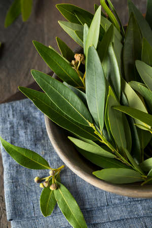 Fresh Organic Green Bay Leaves in a Bowl Banque d'images