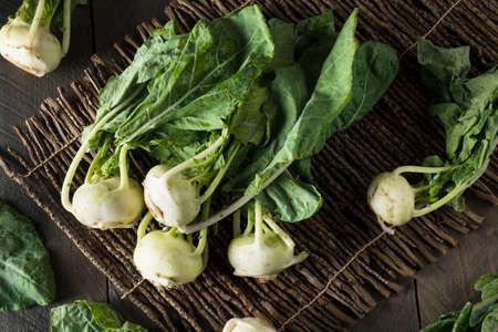 Raw Organic Green Kohlrabi in a Bunch