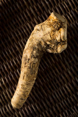 Raw Organic Brown Horseradish Root Ready for Cooking
