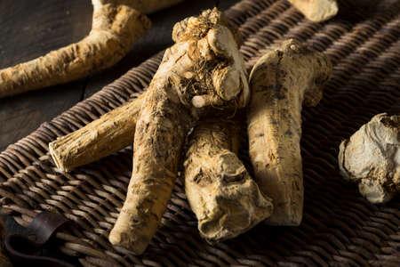 horseradish: Raw Organic Brown Horseradish Root Ready for Cooking
