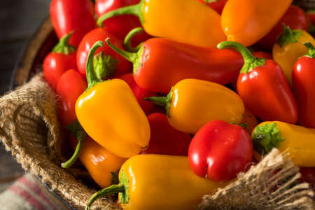 pimientos: Raw Organic Mini Sweet Peppers Ready to Eat