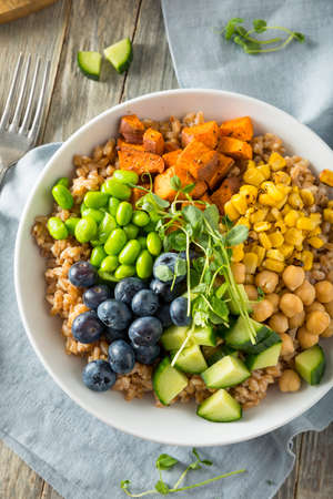 Raw Organic Healthy Buddha Bowl with Farro Spinach Edamame and Cucumber Stock Photo