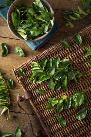 生のグリーン有機カレーの葉で調理する準備ができて 写真素材