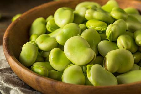 Ruwe organische verse groene Fava bonen Rans om te koken met