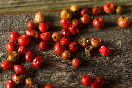 Dry Organic Red Peppercorns Ready to Grind Up