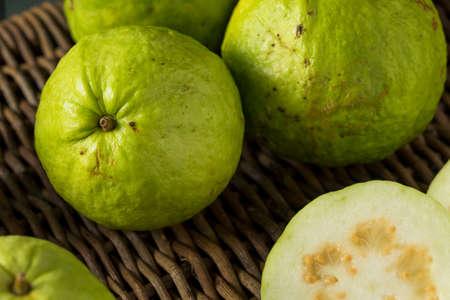 guayaba: Raw Organic Green Large Guava Ready to Eat Foto de archivo
