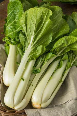 Rauwe groene organische Bok Choy gezonde verse groente