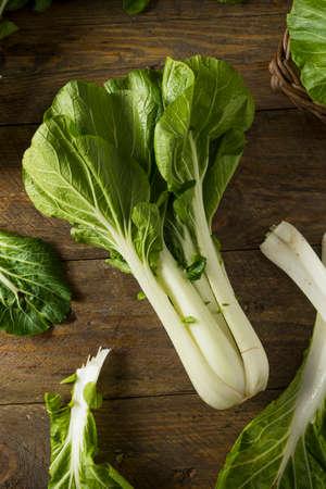 Raw Green Organic Bok Choy Healthy Fresh Vegetable