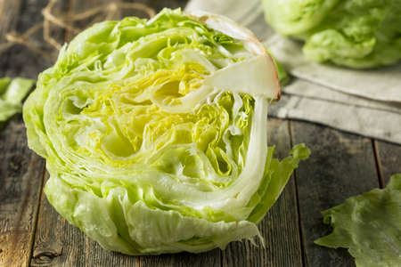 Raw Organic Round Crisp Iceberg Lettuce Ready to EAt