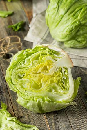 Raw Organic Round Crisp Iceberg Lettuce Ready to EAt