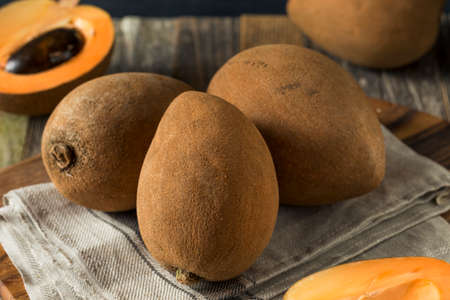 Raw Organic Brown Mamey Fruit with a Brown Seed