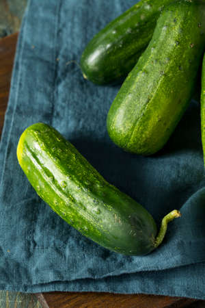 Raw Green Organic PIckle Cucumbers Ready to Eat