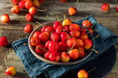 Raw Organic Red Sweet Cherries Ready to Eat 스톡 콘텐츠