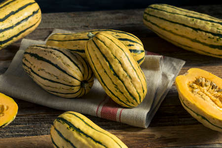 Raw Organic Delicata Squash Ready to Cook With