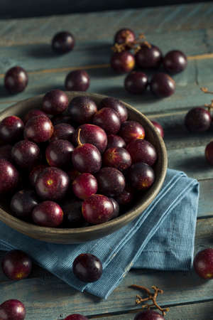 concord grape: Homemade Sweet Muscadine Grapes in a Bowl Stock Photo