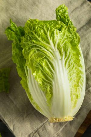 Raw Green Organic Napa Cabbage Ready to Use