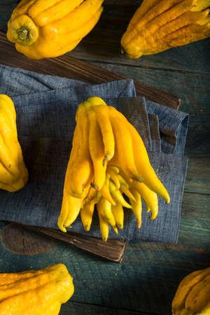 Jaune biologique capsules d & # 39 ; agrumes à la main avec les doigts Banque d'images - 85606839