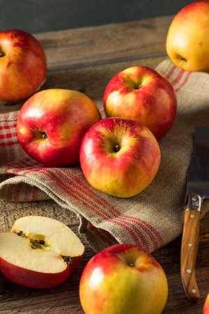 Raw Red Organic Sweet Tango Gala Apples Ready to Eat