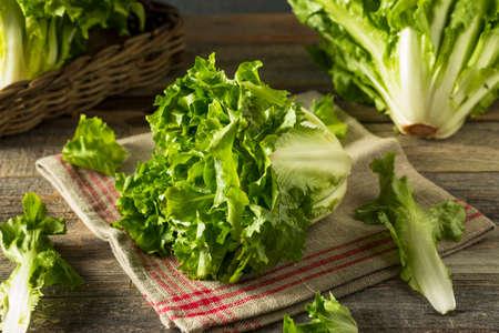 Surowa Zielona Organiczna Escarole Sałata Przygotowywająca Siekać Zdjęcie Seryjne