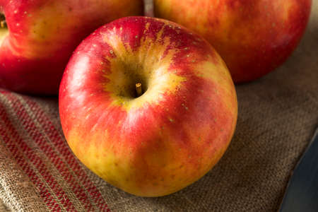 Raw Red Organic Sweet Tango Gala Apples Ready to Eat Stock Photo