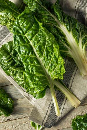 유기농 그린 스위스 Chard 요리 준비