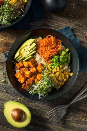 Healthy Organic Tofu and Rice Buddha Bowl with Veggies