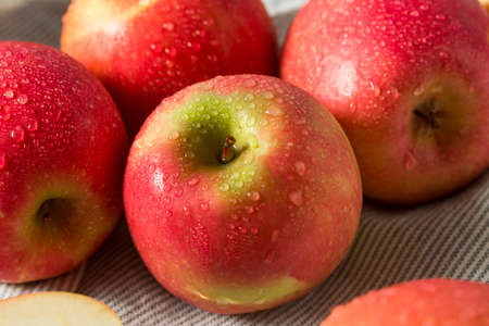 Raw Red Organic Pink Lady Apples Ready to Eat Archivio Fotografico
