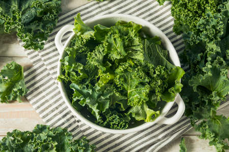 Raw Green Organic Curly Kale in a Bowl