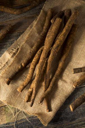 Raw Brown Organic Burdock Root on Burlap