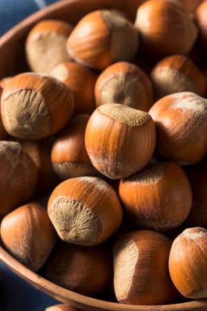 Raw Brown Organic Shelled Hazelnut Filberts Ready to Crack