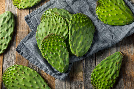 Raw Green Organic Cactus Leaf Fruit Ready to Cook