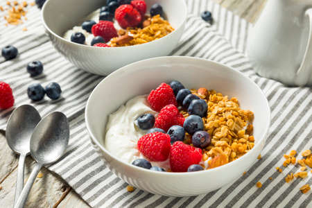 Healthy Organic Greek Yogurt with Granola and Berries in a Bowl