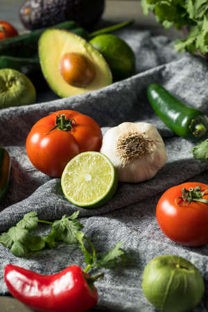 Raw Organic Healthy Mexican Vegetables and Herb Ingredients Imagens