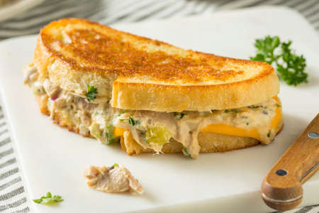 Homemade Toasted Tuna Melt Sandwich Ready to Eat