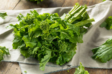 Raw Green Organic Broccoli Rabe Ready to Cook