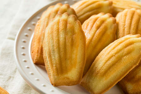 Homemade Sweet French Madeleines Ready to Eat Stock Photo